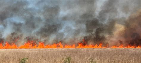 Learn About Using Fire To Manage Grassland / 4-10-19 Burn