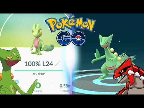 On the Origin of Species: Treecko, Grovyle and Sceptile